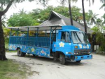 The Bula bus – waits patiently to take swimmers to the sunset beach bar